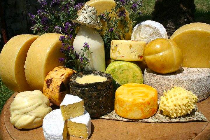 fromages et vins mexique, querétaro, gastronomie mexicaines, fermes mexicaines, vignobles mexicains