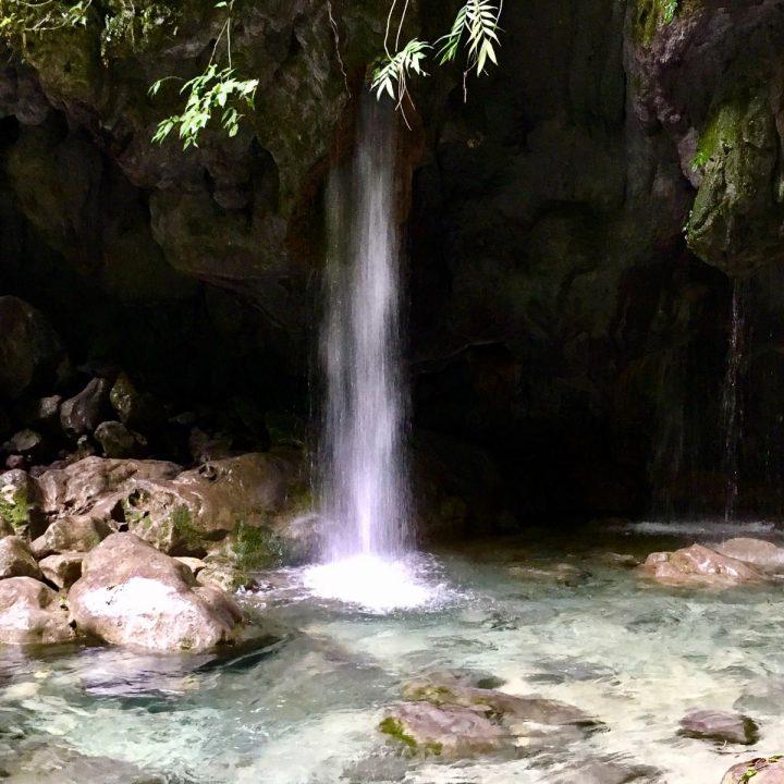Sierra Gorda, mexique, nature du mexique, découverte, randonnée, querétaro
