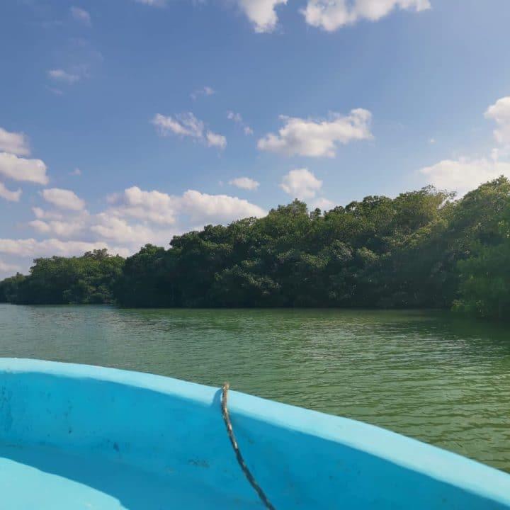 rio lagartos, pêcheur local, excursion locale, yucatan, rio lagartos à la carte